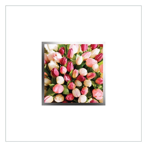 Greeting Cards - 6 pack - EA92W - product image