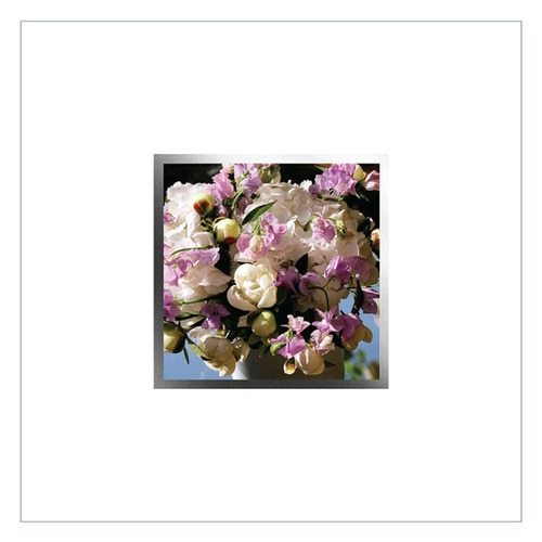 Greeting Card - EA85W - product image