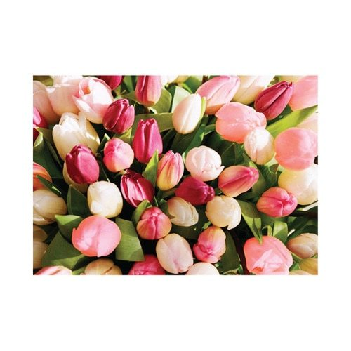 Pink Pepper Flower Gift Cards with Envelope - product image