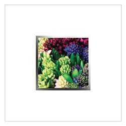 English Accent Greeting Card - EA87W