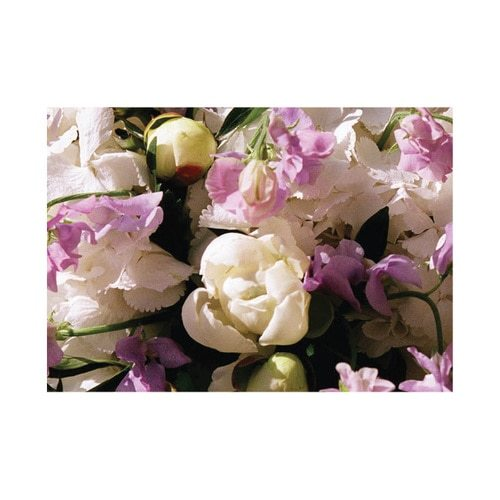English Accent Sweet Pea Gift Card with Enve.