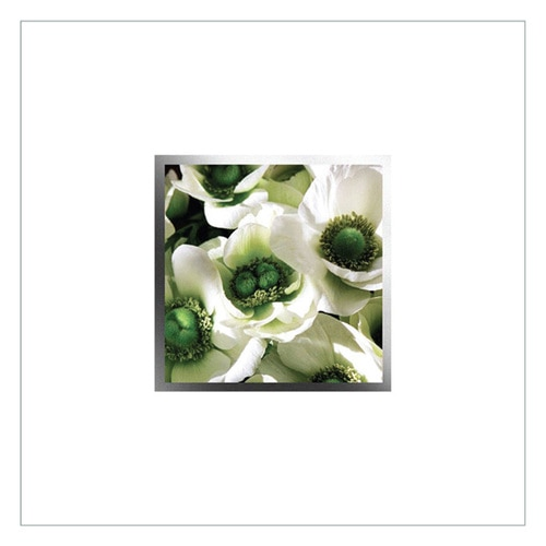 Greeting Cards - 6 pack - EA89W - product image