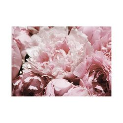 English Accent Peony Gift Card with Envelope