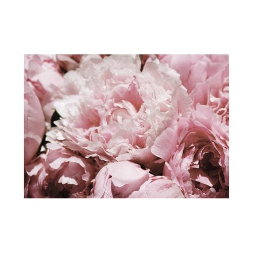 Peony Gift Card with Envelope - product image